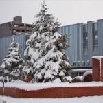 12月17・18日の積雪で雪に埋まる江別市とポンポチ唐揚げ