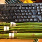 江別に野菜の季節がやってまいりました!