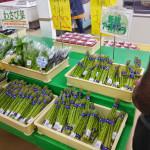 のっぽろ野菜直売所で健康とワクワクをもらおう!※追記あり 2016年 オープン日
